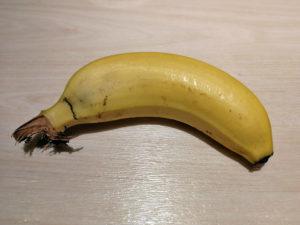 ゴリラフルーツ